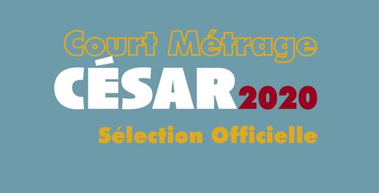 Pré-sélection de nos films Shortcuts au César du meilleur court-métrage
